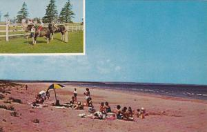Children riding ponies, Gregors by-the-Sea, Brackley Beach, Prince Edward Isl...