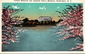 Washington D C Lincoln Memorial and Japanese Cherry Blossoms