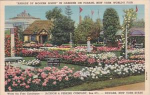New York World's Fair 1939 Parade Of Modern Roses Jackson & Perkins Company R...