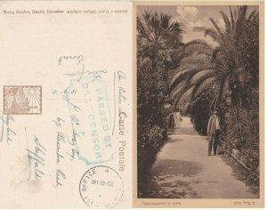 Censor EEF Mandat K 1918 Israel Palestine Jaffa PC Active Service Israel Bezalel