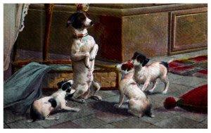 Dog ,  Puppies