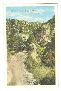On the Trail, Mt.Lowe,California,00-10s