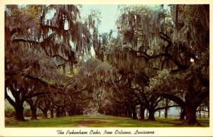 Louisiana New Orleans The Pakenham Oaks