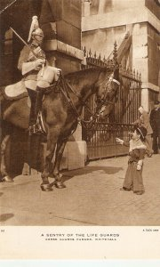 A Sentry of the Life Guards. Horses Tuck Real Photograph Postcard