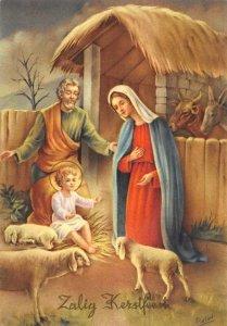 Zalig Kerstfeest The Birth of Jesus Animals Merry Christmas Art Postcard