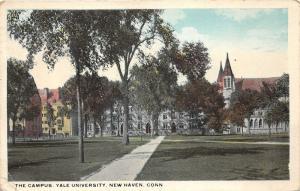 New Haven Connecticut~Yale University Campus & Buildings~1921 Postcard