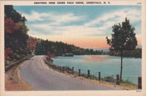 New York Greetings From Cooks Falls Lodge