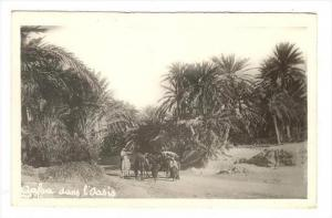 RP  Arab family, Gafsa dans l'oasis, Tunisia , 20-30s