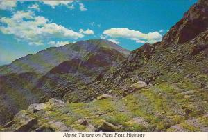 Colorado Pikes Peak Alpine Tundra On Pikes Peak Highway