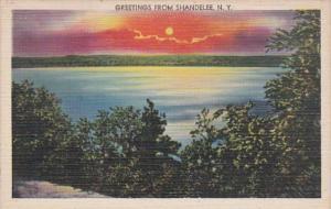New York Greetings From Shandelee