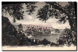 Old Postcard Monaco between Olives