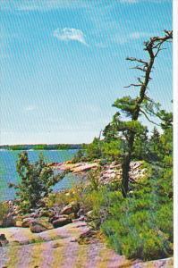 Greetings From Nominique Quebec Canada