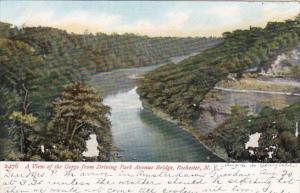 New York Rochester View Of The Gorge From Driving Park Avenue Bridge 1907