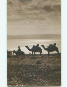 old rppc NICE VIEW Sea Of Galilee - By Tiberias & Nazareth Israel i2736