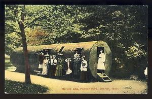 Early Detroit, Michigan/MI Postcard, Spruce Log In Palmer
