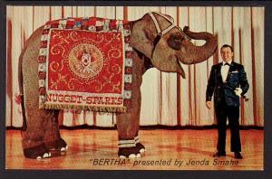 Little Bertha Elephant Post Card 5166
