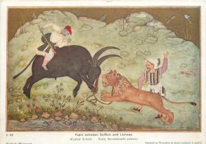 Mughal School - Fight between Buffalo and Lioness
