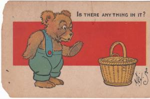 US Postcard 1911 bear and basket Is there any thing in it  - with rips