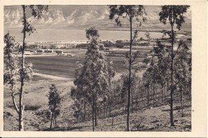 JUDAICA, Israel, Palestine, Kibbutz Kinareth pre-1948, Farm, Sea of Galilee