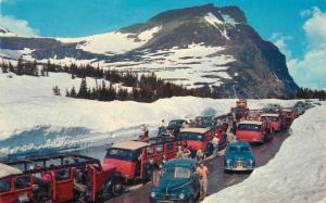 Autos Bus Montana Snow covered Mountains Logan's Glacier 1950s Postcard 13260