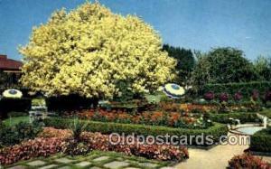 Spanish Garden & Ghost Tree Portland OR Unused