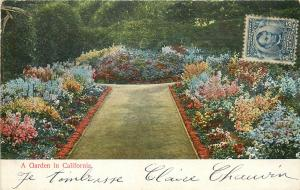A Garden in California 1900s unposted postcard United States