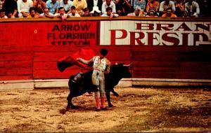 Bull Fight Un Recorte