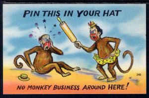 No Monkey Business Around Here,Monkeys Comic