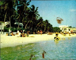 CI01350 dominican republic santo domingo boca chica beach palmtree caribbean sea