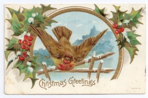 Christmas Bird Snowoy Winter Scene Holly Embossed Gold Gilt Frame Vntg Postcard