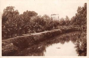 Tunisia Gabes Les Bords de l'Oued et le Jardin Garden