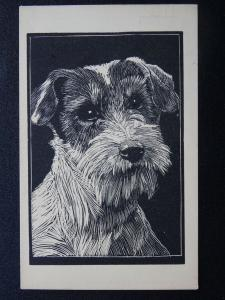 Dog Portrait WIRE-HAIR FOX TERRIER c1954 Postcard by Redfern Co. Ltd