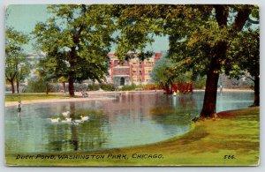 Chicago Illinois~Washington Park Duck Pond~White Birds~c1908 Postcard