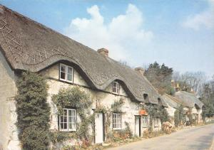 Isle of Wight Postcard, Brighstone Village by J. Arthur Dixon Q11