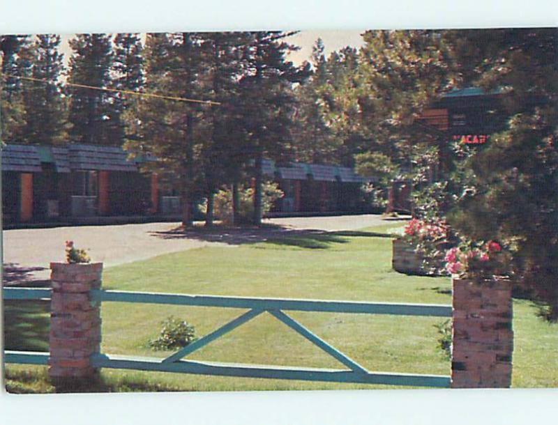 Unused Pre 1980 MOUNTAIN PINE MOTEL East Glacier Park Montana MT M3507