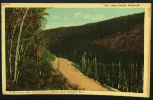 "Postcard Unused ""On Union Pacific Railroad""  Medicine Bows Laramie WY LB"
