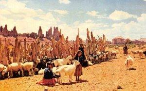 Native Americana  NAVAJO INDIAN GIRLS & TENDING SHEEP  c1950's Chrome Postcard