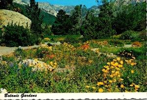California Santa Barbara Botanic Gardens