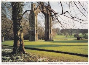 Snowdrop Garden Walsingham Norfolk Postcard