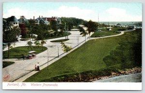 Portland Maine~Birdseye Western Promenade~Monument~Horse Drawn Surrey~c1905