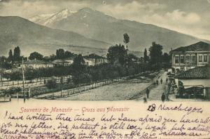 ottoman turkey, MONASTIR BITOLA, Macedonia, Street Scene (1904)