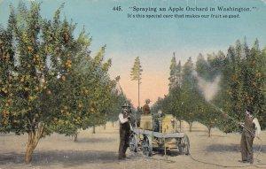 WASHINGTON, 1900-1910s; Spraying An Apple Orchard In Washington