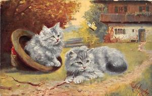Cat Post Card Old Vintage Antique Painted Cats 1910