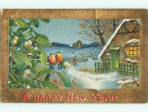 Divided-Back NEW YEAR SCENE Great Postcard W7451