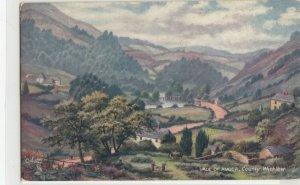 Vale of Avoca , County Wicklow , Ireland , 00-10s ; TUCK 7029
