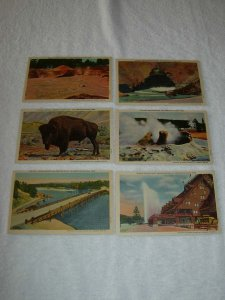 Yellowstone National Park WY - Lot Of 6 all Pre Chrome Postcards - x0522