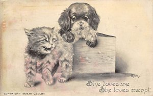 Cat Post Card, Cats Postcards She Loves me, She loves me not, Vcolby 1909