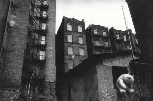 Giant Teddy Bear in Harlem New York Photo Postcard