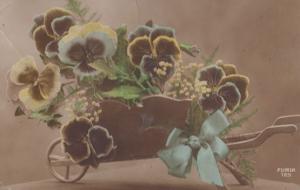 Wheelbarrow Of Flower Flowers To Dolly 1917 WW1 War Wartime Antique Postcard