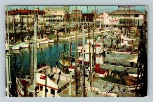 San Francisco CA- California, Fishing Fleet, Chrome c1959Postcard